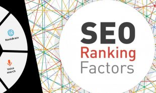 naxskills SEO online training course